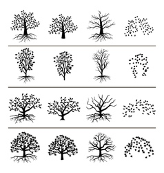 trees with roots foliage and fallen leaves vector image vector image