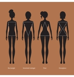 Female body types silhouettes vector