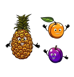 Apricot pineapple and plum fruits vector
