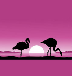 Flamingo on riverbank scenery silhouettes vector