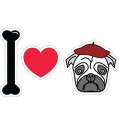 I love pug with beret vector image vector image