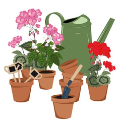 potted flowers and watering can vector image vector image