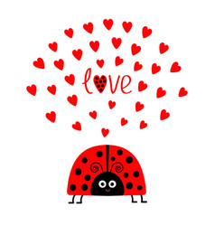Red lady bug insect with hearts cute cartoon vector