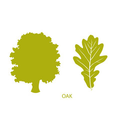 simple icon of tree and leaf vector image