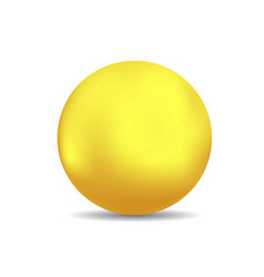 bronze or gold spheres or ball vector image