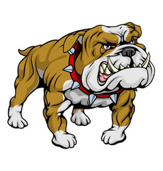 Bulldog clipart vector