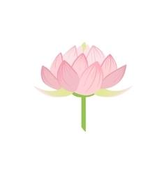 Padma lotus sacred indian flower vector