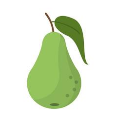 Pear fruit nutrition icon vector