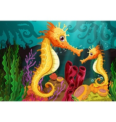 Two seahorses under the sea vector