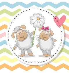 Greeting card with two Sheep vector image vector image
