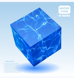 water cube vector image vector image