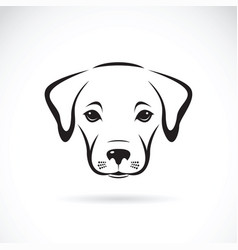 Labrador puppy face on white background dog pet vector