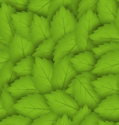 Seamless stylish pattern with green leaves vector image