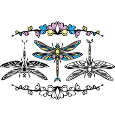 Set dragonflies color stencil and black variants vector image