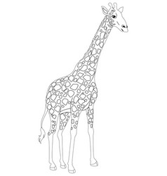 Animal outline for giraffe vector
