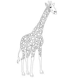animal outline for giraffe vector image vector image