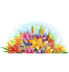 Arrangement of lilies and irises vector image vector image