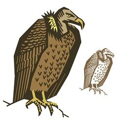 Vulture Bird vector image vector image