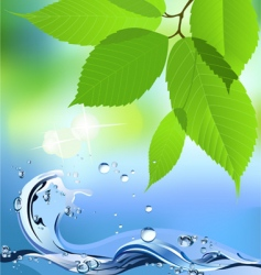 Water wave and leaves vector