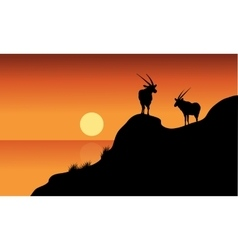 Antelope silhouette on cliff vector