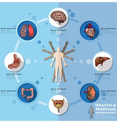 Health and medical infographic infocharts science vector