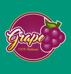 grape design label vector image vector image