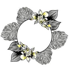 Exotic flowers set botanical vintage vector