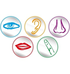 Five senses icon set - vector image