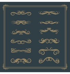 Vintage retro calligraphic design elements scroll vector