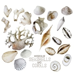 Collection of watercolor seashells and corals vector