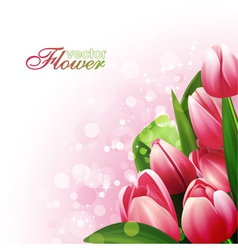 Beautiful flowers background vector image vector image