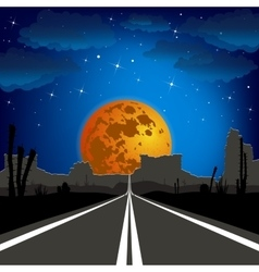 The road in the desert at night landscape vector image vector image