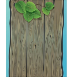 Wooden wall and green spring leaves of birch vector image