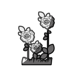Monochrome silhouette roses planted with leaves vector
