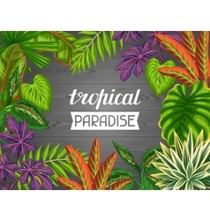 Tropical paradise card with stylized plants and vector