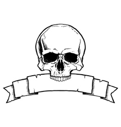 Black and white human skull with ribbon banner vector