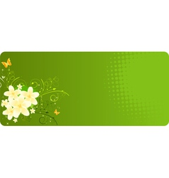 Green banner with plumeria vector image vector image