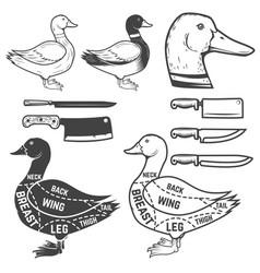 Duck butcher diagram design element for poster vector