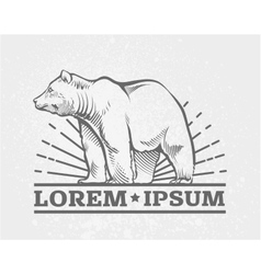 Bear logo emblem simple image vector