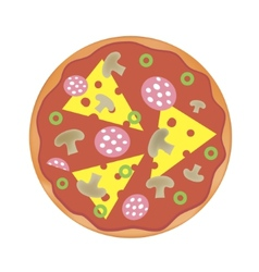 Pizza with cheese salami mushrooms vector
