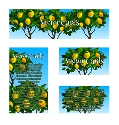 Four original cards with the image of lime trees vector