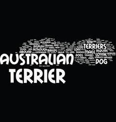 Australian terriers make loyal pets text vector