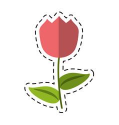 Cartoon tulip flower decoration easter vector