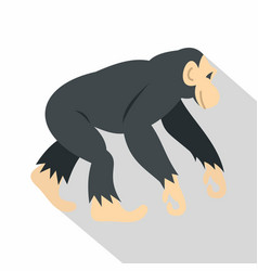 chimpanzee icon flat style vector image