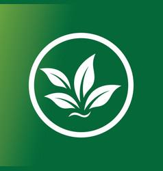 circle green leaf logo vector image vector image