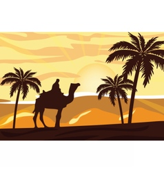 Egyptian camel and man at sunset vector image vector image