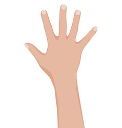 Womans hand vector