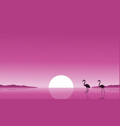 Collection stock of flamingo on lake scenery vector