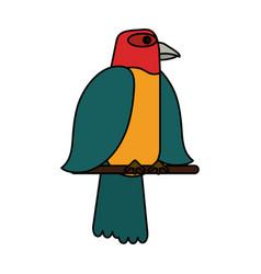 exotic natural bird vector image vector image