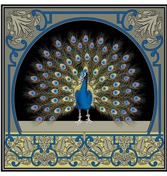 Frame with peacock vector image